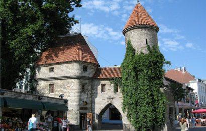 Таллин — наше летнее путешествие